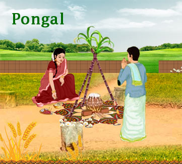 Image result for thai pongal 2017